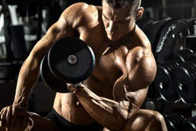 Qué músculos entrenar juntos