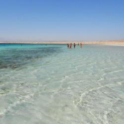 Sharm El Luli (Marsa Alam, Egipto)